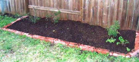 """My backyard flower bed, after I pulled out all the winter weeds and primed it with some """"landscape mix"""" I got at RCW Nursery."""