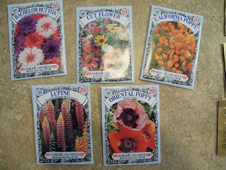 These seeds were 20 cents each, at Wal-Mart.