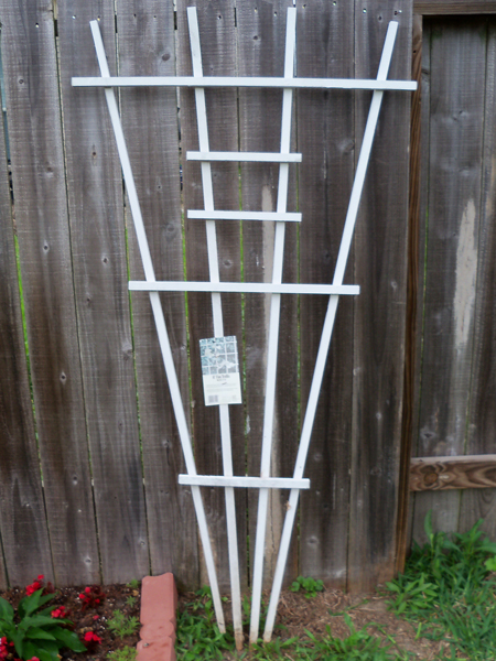 I drove right by this trellis, sitting curbside in some unknown neighbor's trash - and I kicked myself about it all the way to work. But then, without me even mentioning it, Kim decided to repurpose one person's trash into our new treasure. Go Kim!