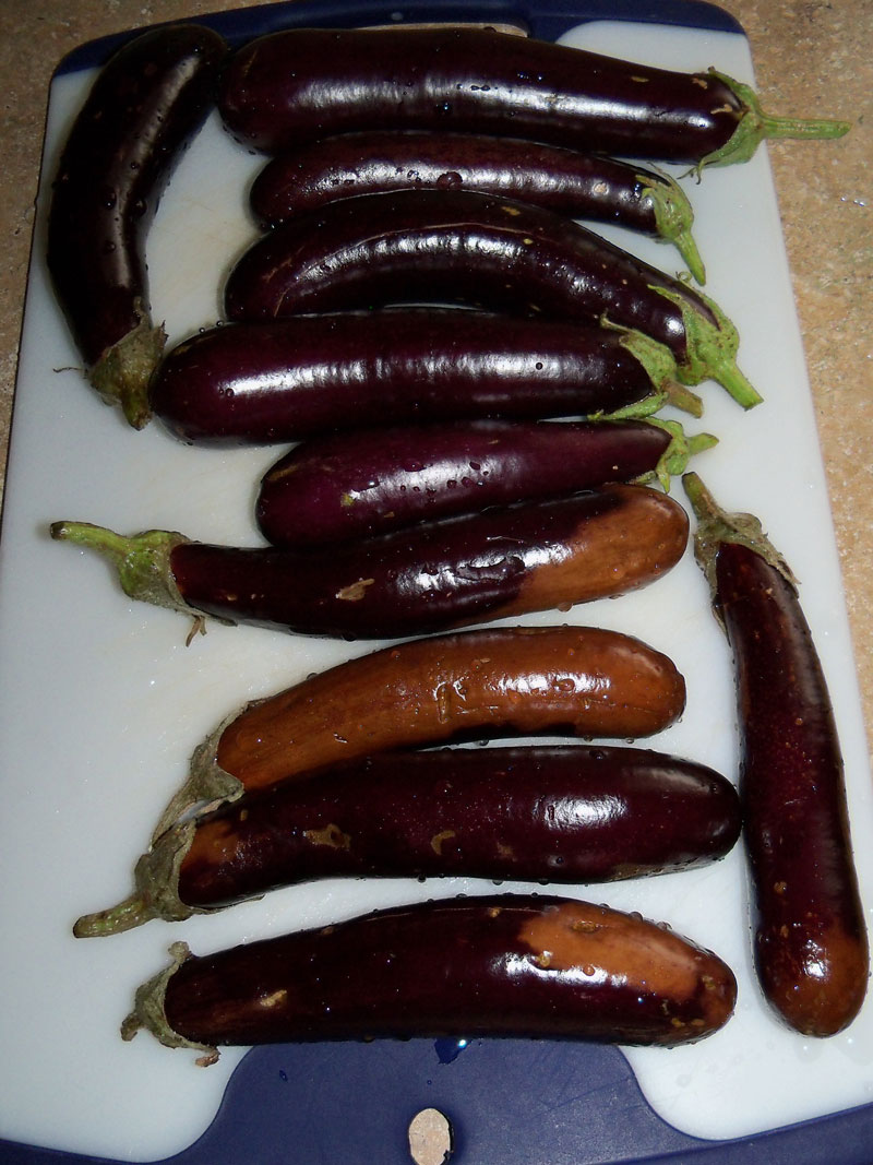 Eggplant ready to grill on May 22